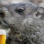 PA Groundhog drinking a beer